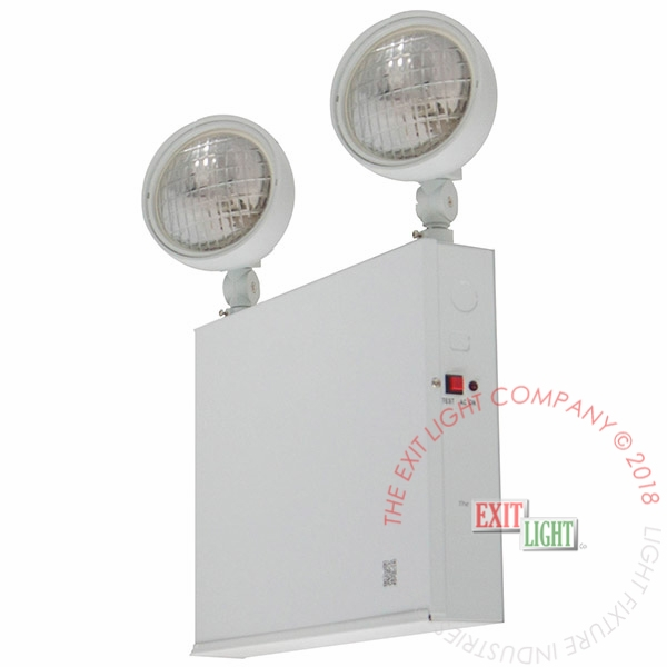 Steel NYC Emergency Light | 2 or 3 Heads | 54W